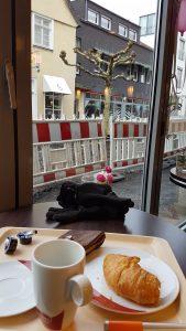 Im Vordergrund eine leere Tasse Kaffee, ein angebissenes Croissant, ein Füller, eine Geldbörse, Handscchuhe. Im Hintergrund Barke, Baum und Baustelle.